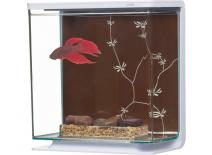 Akvárium MARINA Betta Kit Contemporary  (3l)
